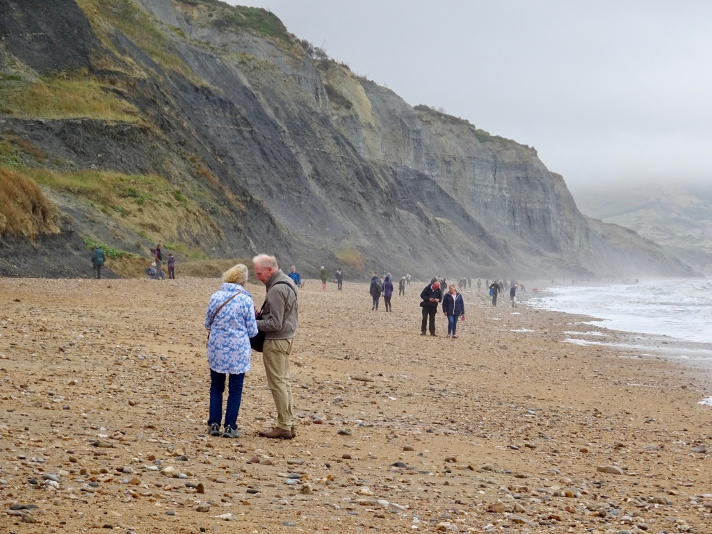 Charmouth Fossil Hunting