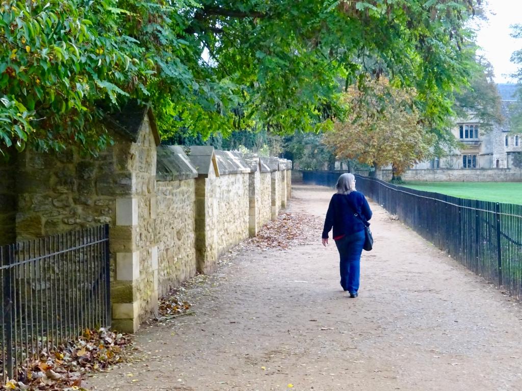 Christchurch Meadow, Oxford